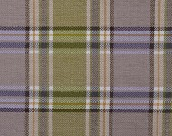 Ткани Celtic Plaid 103      5019