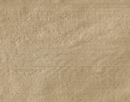 Ткани Indian Silk Beige — 15      9579